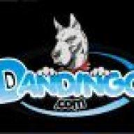Dandingo