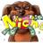 Niche Dog